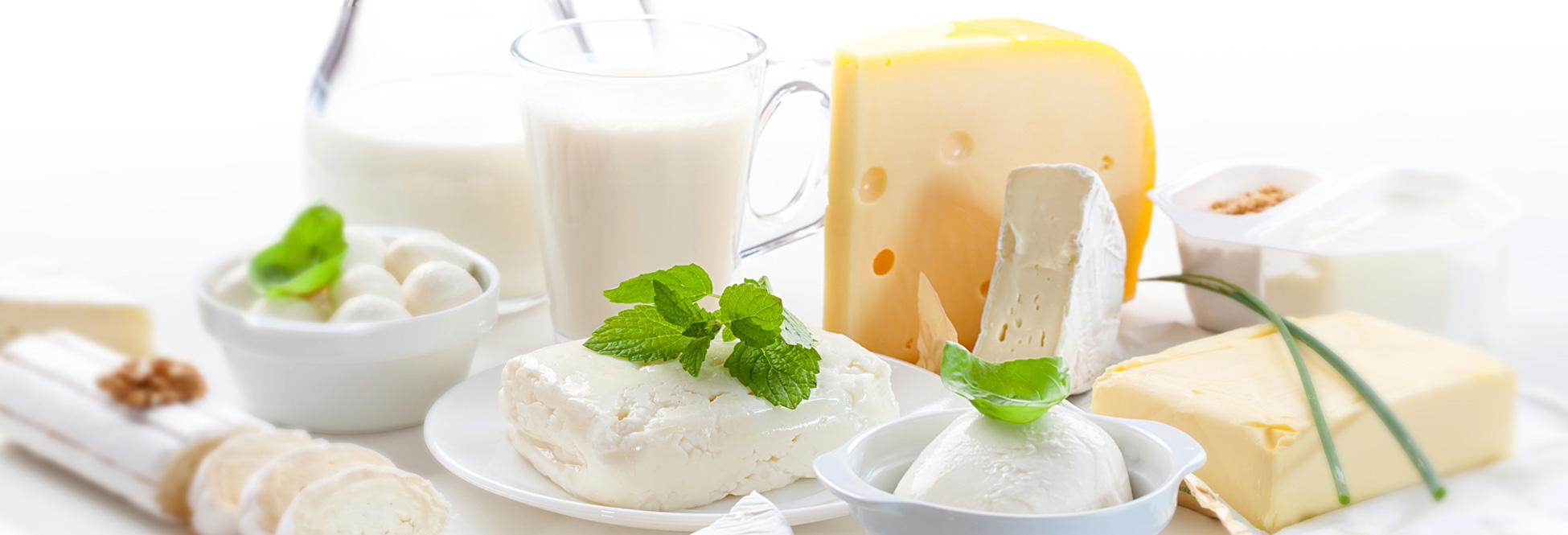 Sie sehen verschiedene Milch und Molkereiprodukte