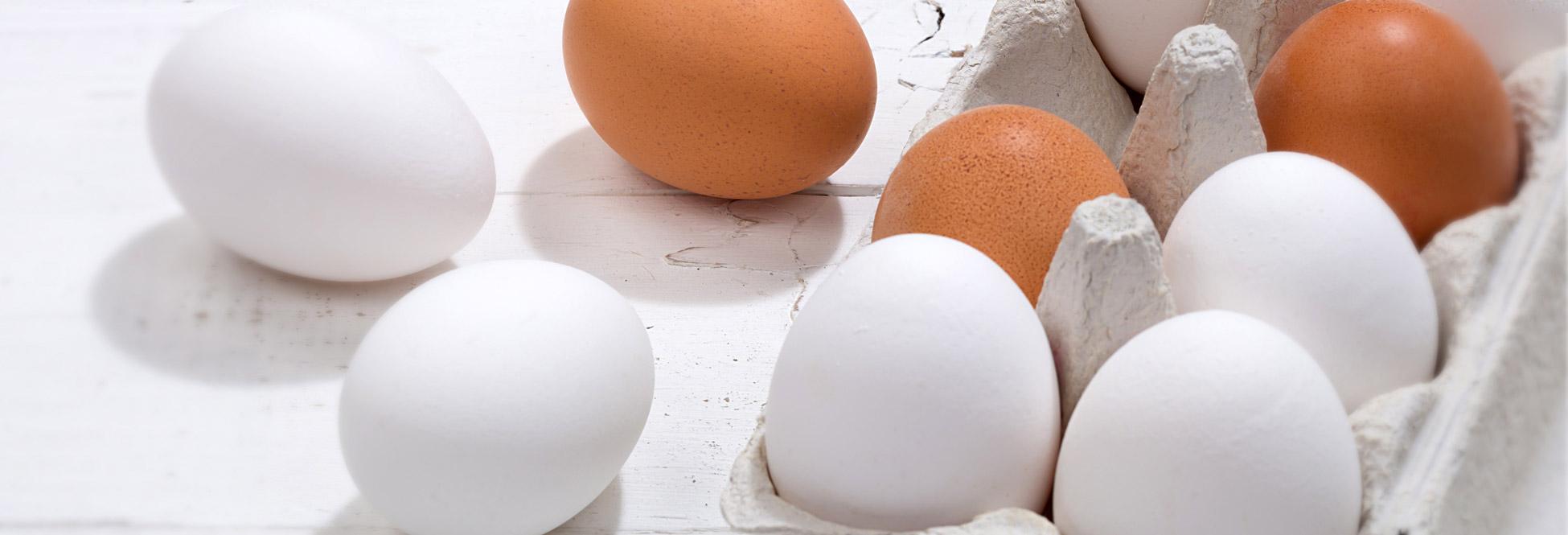 Sie sehen einen Eierkarton mit weißen und braunen Eiern
